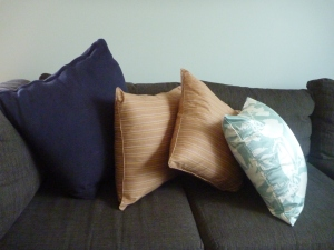 Ordinary cushions